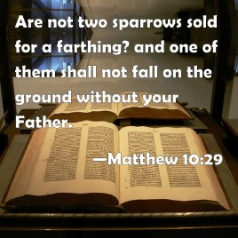 Message - Bible two sparrows Matthew 10.29